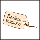 Basilikum aus der Toskana 100%